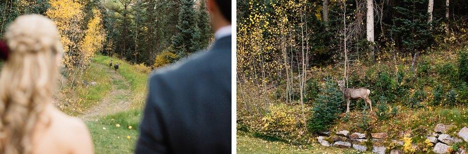 Telluride Fall Wedding_0072