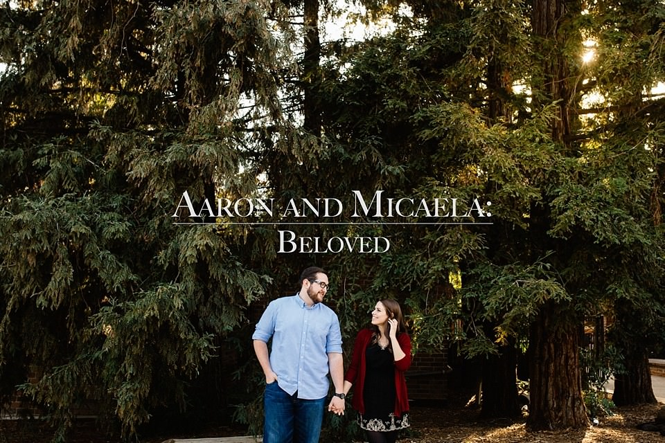 Aaron and Micaela: Beloved Engagement in Los Angelos